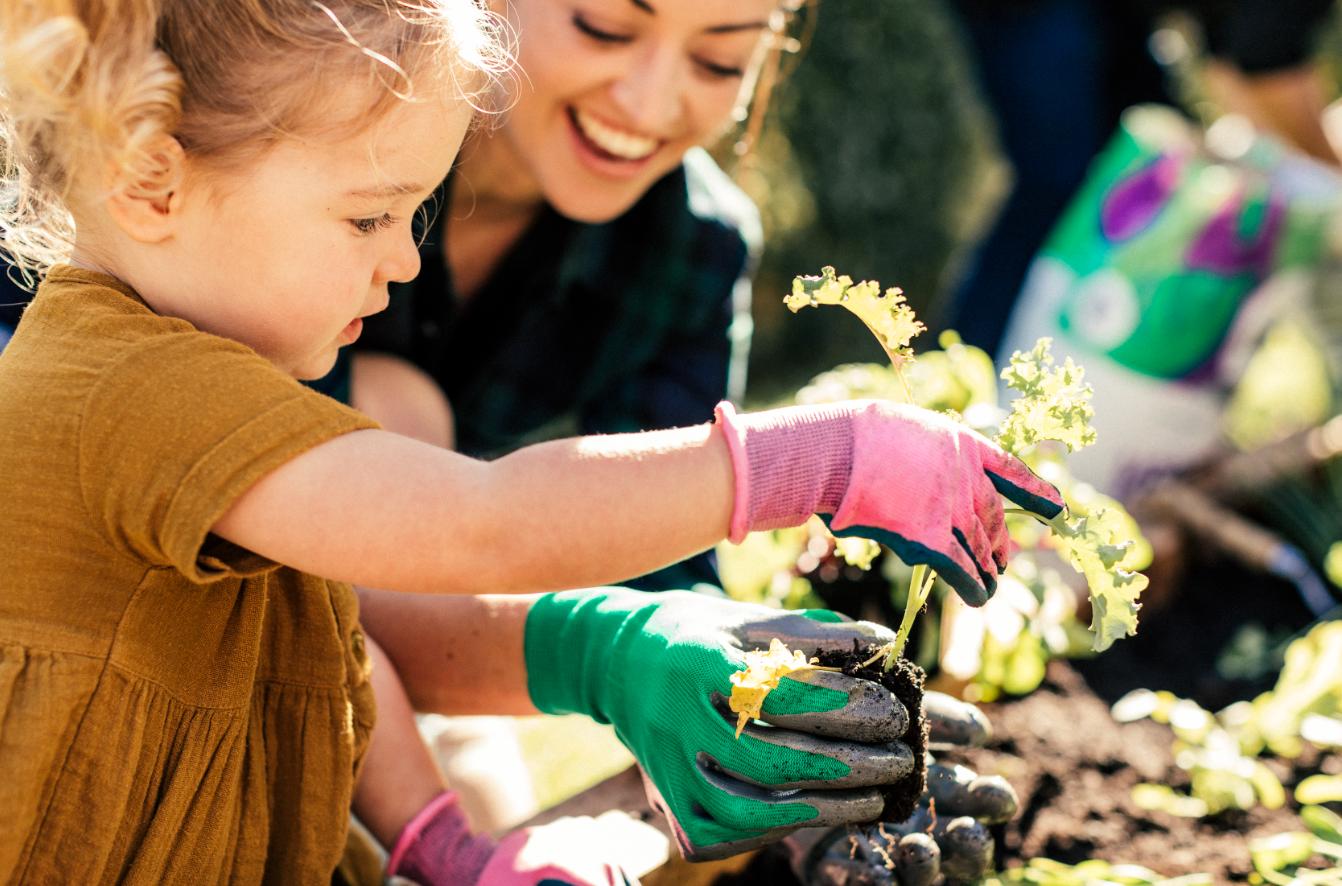 spring family gardening guide